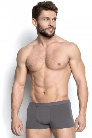 Pánské boxerky 18724 Burito 09x grey šedá