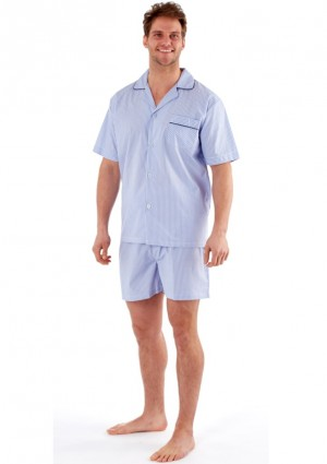 Pánské pyžamo Fordville MN000090 L Sv. modrá