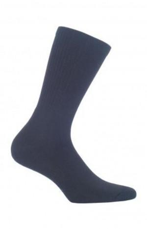 Pánské hladké ponožky FROTTE AG+