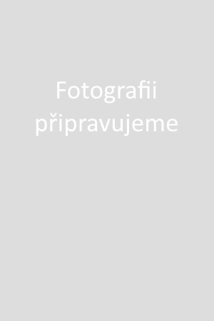 Tričko adidas Originals 3 Stripes Tee Modrá