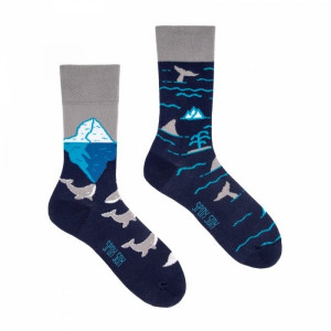 Spox Sox Arctic whales Ponožky 40-43 vícebarevná