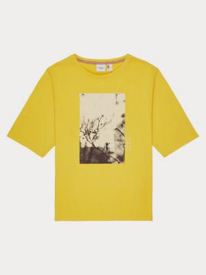 Tričko O´Neill Lw Felines Of T-Shirt Žlutá