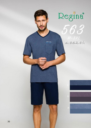 Pánské pyžamo 563  modrá