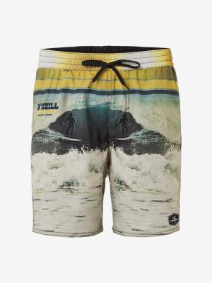 Boardshortky O'Neill Pm Archive Shorts Barevná
