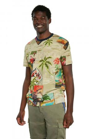 Desigual barevné pánské tričko TS Caton