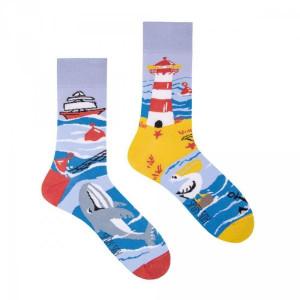 Spox Sox Sea cost Ponožky 40-43 vícebarevná