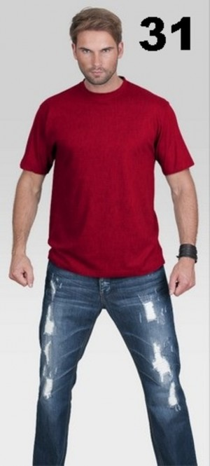 Pánské tričko premium 21185 - PROMOSTARS