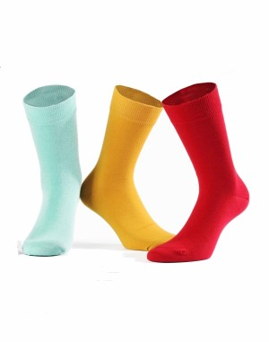 Pánské ponožky Wola Perfect Man W 94.N03