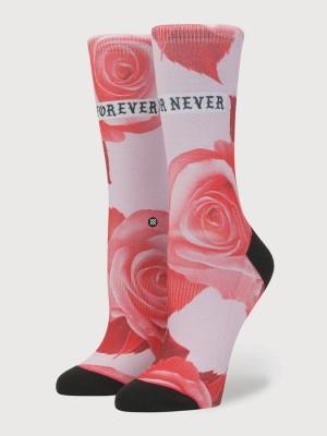 Ponožky Stance Dedication Tomboy Pink Barevná